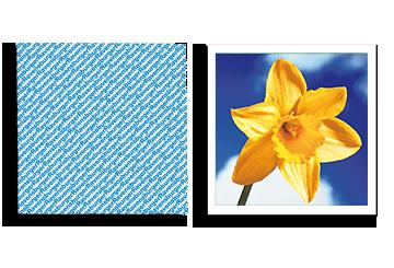 Ravensburger memory® Spielkarten Blume gelb